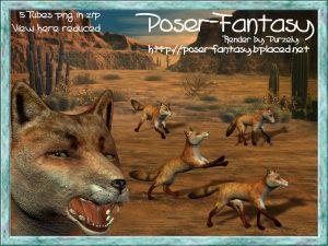 Fox Set02