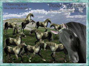 Horse Albano Set01