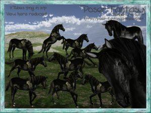 horse Bajan Set01