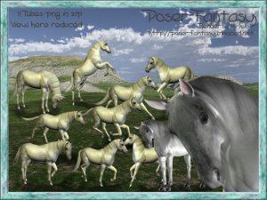 Horse Whitehall Set01