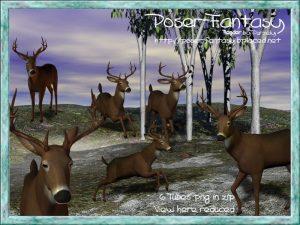 Buck Set02